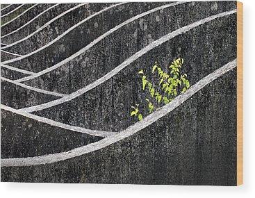Concrete Wood Prints