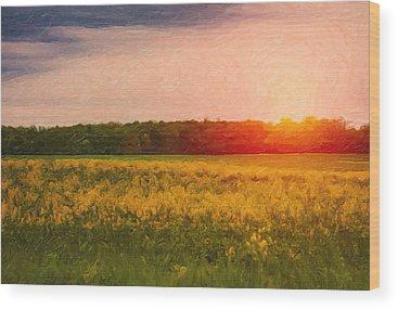 Setting Sun Wood Prints