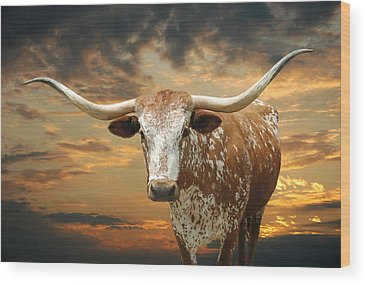 Texas A And M Wood Prints