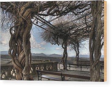 Richard Morris Hunt Wood Prints