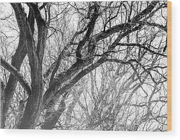 Ice Storm Wood Prints