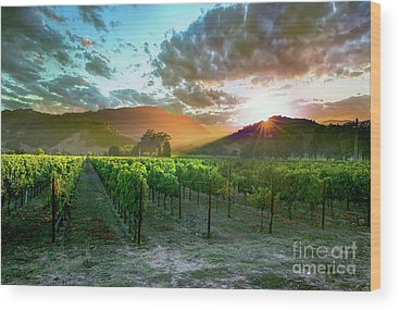 Grape Vine Wood Prints