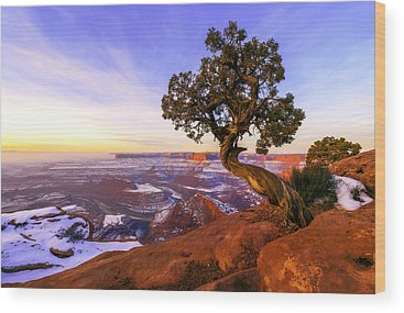 Colorado River Wood Prints