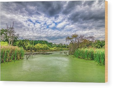 Marsh Grass Wood Prints
