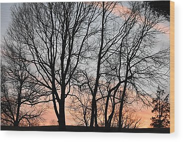 Pink Sunset Wood Prints