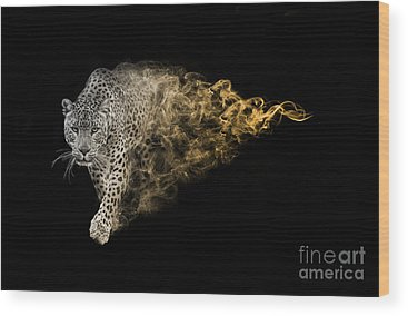 Mammals Of Africa Wood Prints