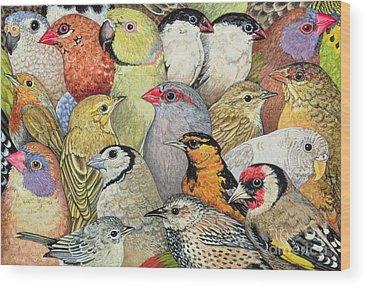 Bird Paintings Wood Prints