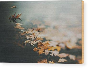 Water Fall Photographs Wood Prints