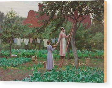 Picking Apples Wood Prints