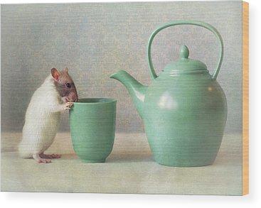 Rodent Wood Prints