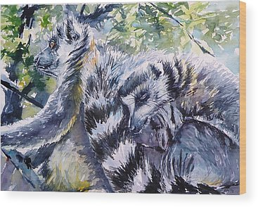 Ring Tailed Lemurs Wood Prints