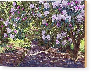 Delaware Park Wood Prints