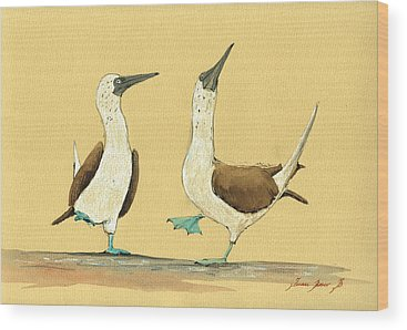 Seabirds Wood Prints