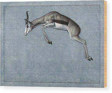 Mammal Wood Prints