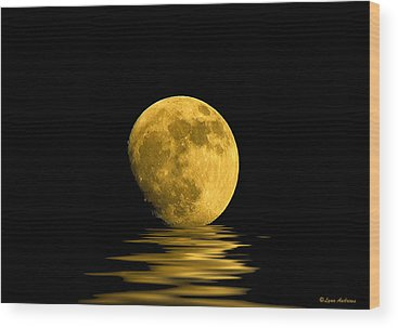 Moonlit Wood Prints