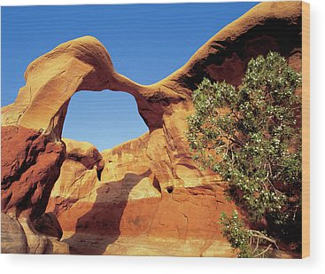 Arches National Monument Wood Prints