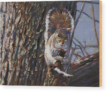 Squirrels Wood Prints