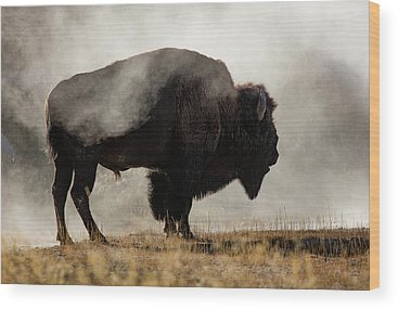 Wyoming Wood Prints
