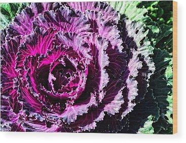 Kale Wood Prints