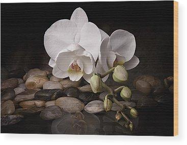 Beauty Wood Prints