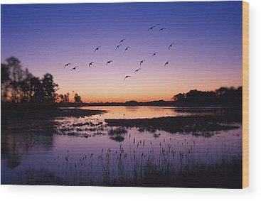 Goose Island Wood Prints