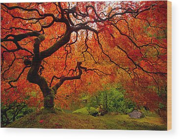 Portland Wood Prints