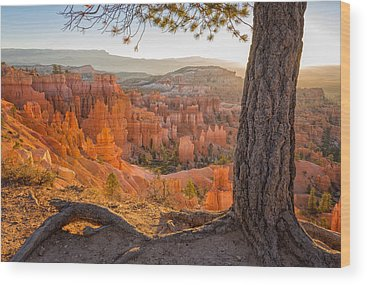 Bryce Canyon National Park Wood Prints