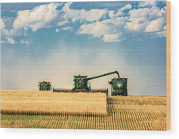 Harvest Wood Prints