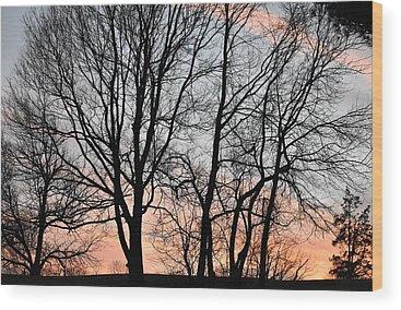 Pink Sunset Wood Prints