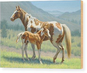 Colt Wood Prints