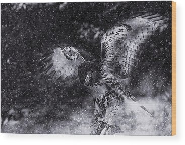 Burlington Wood Prints