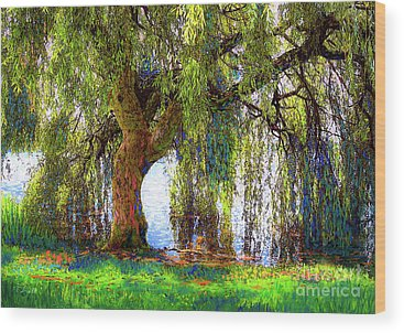 Weeping Willow Tree Wood Prints