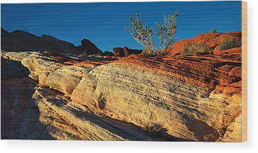 Valley Of Fire Wood Prints