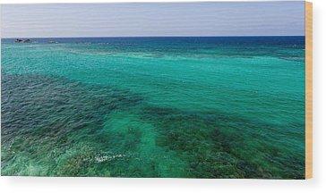 Coral Reef Wood Prints