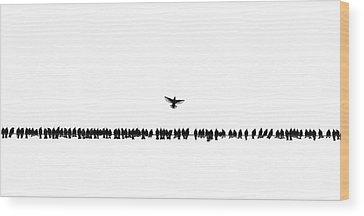 Starlings Wood Prints