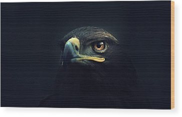 Eagle Photographs Wood Prints