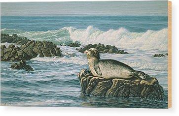 Seals Wood Prints