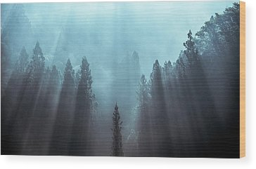 Foggy Wood Prints