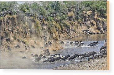 Masai Mara Wood Prints