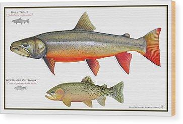 Columbia River Drawings Wood Prints