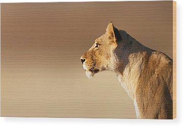 Lionesses Wood Prints