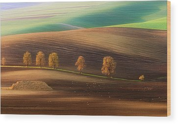 Agriculture Wood Prints