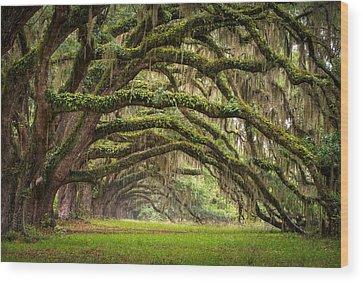 Nikon Wood Prints