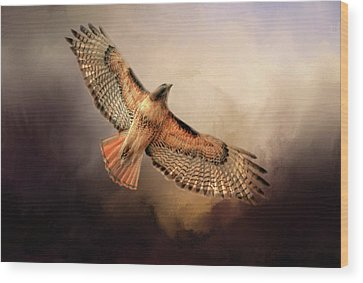 Red Tail Hawk Wood Prints