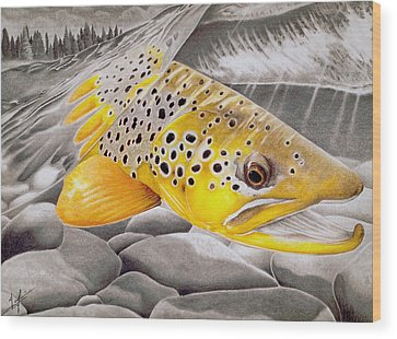 Salmon Wood Prints