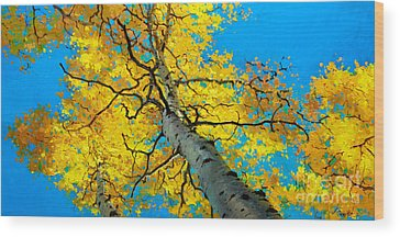 Fall Foliage Wood Prints