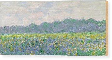 Irises Wood Prints