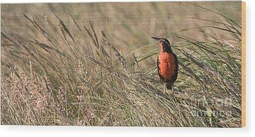 Meadowlark Wood Prints