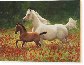Baby Horse Wood Prints