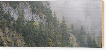 Lauterbrunnen Wood Prints